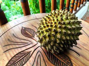 Chincuya Fruit