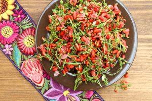Flor de botil –Scarlet Runner Bean